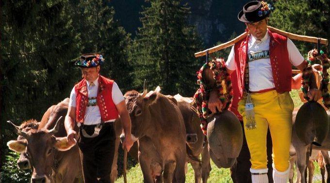 Swiss Souvenirs - Cow Bell Swiss Emblem 'Gold'