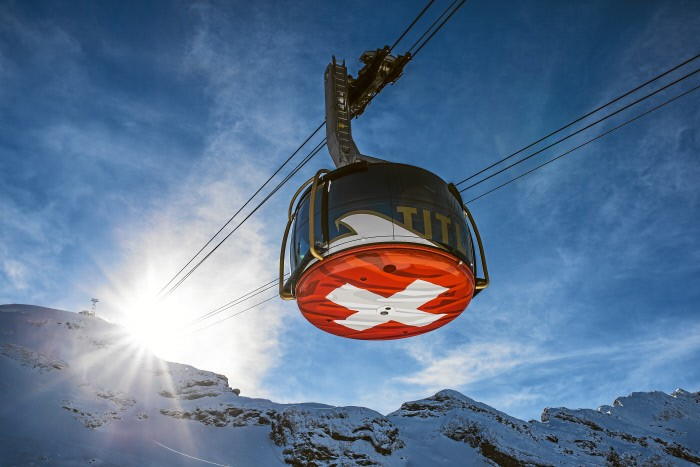 Alpine Club - Key-Chain Edelweiss Two Pendants