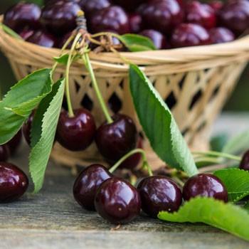 Wunderstaa - Kirsch Schnapps with Cherry Fruit (50 CL)