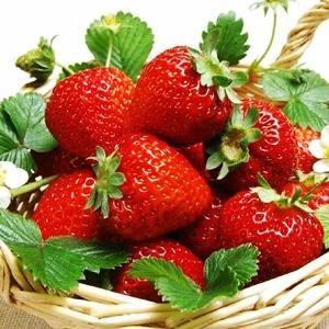Kindschi - Strawberry Cream Liqueur (70 CL)