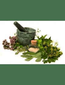 """Appenzeller - Herbs """"Kräuter"""" (100 CL)"""