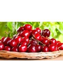 Appenzeller - Kirsch Cherry Schnapps (100 CL)
