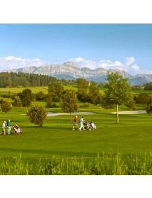 Edelweiss - Swiss Mini Golf Bag 'Tee Off'