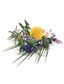 Soglio - Massage Oil Rosemary - Hay Flowers