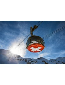Alpine Club - Edelweiss T-Shirt 'Swiss Cross' (XXL)