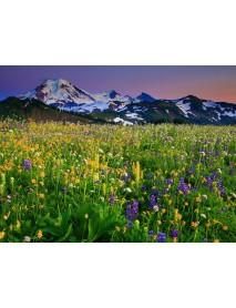 Alpin Natürlich - Swiss Herbal Tea 140 g (bags)