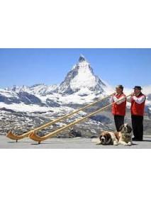 Trauffer - Swiss 'Alphorn' Player