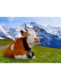 Trauffer - 'Simmentaler' Wooden Cow