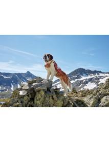 Trauffer - Wooden St. Bernard Dog (small)
